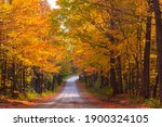 Country Road In The Fall With...