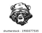 bear with bucket hat while... | Shutterstock .eps vector #1900377535