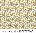 mixed backgrounds with floral... | Shutterstock . vector #1900717165