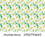 daisies background on grass or ... | Shutterstock .eps vector #1900793665