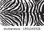 Zebra Print  Animal Skin  Line...