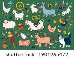 cute farm animals collection ... | Shutterstock .eps vector #1901265472