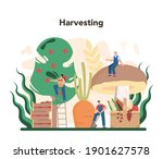 agriculture concept. farming... | Shutterstock .eps vector #1901627578