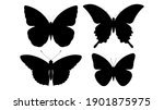 Silhouette Of Butterfly. Set Of ...