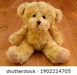 A Cute Stuffed Teddy Bear....