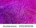 resin art texture with purple ... | Shutterstock . vector #1902305038