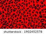 abstract modern leopard... | Shutterstock .eps vector #1902452578