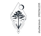 hand drawn tree badge with pine ...   Shutterstock .eps vector #1902561235