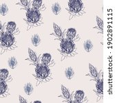 seamless pattern with protea... | Shutterstock .eps vector #1902891115
