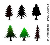 isolated pine on the white... | Shutterstock .eps vector #1903005985