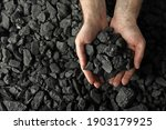 Man Holding Coal In Hands Over...