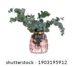 Vase With Beautiful Eucalyptus...