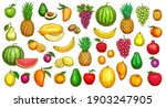 Fruits Sketch Icons  Tropical...
