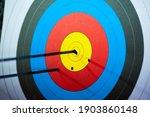 Archery. arrows in archery...