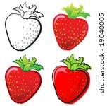 strawberry | Shutterstock .eps vector #19040005