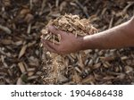 Wood Chips As A Renewable...