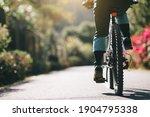 Woman Riding A Bike On Tropical ...
