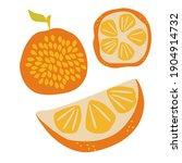 juicy ripe orange  half and...   Shutterstock .eps vector #1904914732