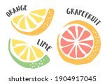 lime  grapefruit and orange...   Shutterstock .eps vector #1904917045