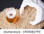 Craft Beer In Glass And Grains...