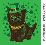 fluffy little black kitten in... | Shutterstock .eps vector #1905267958