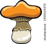 unusual orange mushroom ... | Shutterstock .eps vector #1905319375