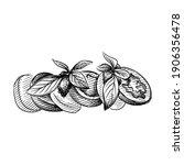 hand drawn sketch of caprese...   Shutterstock .eps vector #1906356478