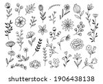 hand drawn flower and branches...   Shutterstock . vector #1906438138