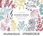 medicinal herbs background....   Shutterstock .eps vector #1906802818
