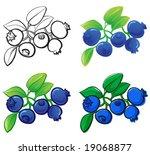 blueberry | Shutterstock .eps vector #19068877