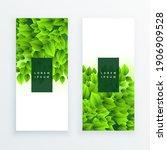 vector banner set with green...   Shutterstock .eps vector #1906909528