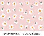 daisy butterfly butterfly... | Shutterstock .eps vector #1907253088
