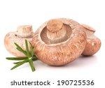 brown champignon mushroom and... | Shutterstock . vector #190725536