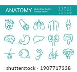 set of vector line icons of... | Shutterstock .eps vector #1907717338
