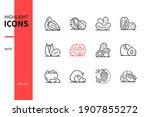 nuts   modern line design style ... | Shutterstock .eps vector #1907855272