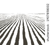 vector farm field landscape....   Shutterstock .eps vector #1907858032