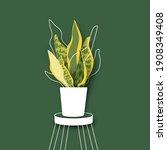 snake plant. houseplant. green... | Shutterstock .eps vector #1908349408