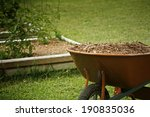 Mulch for garden with tomato plans bed on background - stock photo