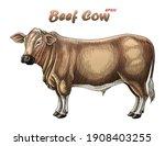 bull hand draw vintage...   Shutterstock .eps vector #1908403255