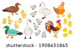 collection of different... | Shutterstock .eps vector #1908651865