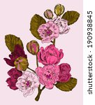 branch of a pink flower | Shutterstock .eps vector #190938845