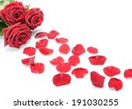 Stock photo red roses and scattered flower petals on a white background still life 191030255