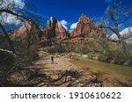 Zion National Park Utah Rugged...