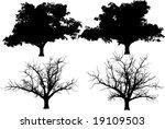 vector trees  oak     fall tree | Shutterstock .eps vector #19109503