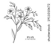 medicinal plant flax on a white ...   Shutterstock .eps vector #1911010672