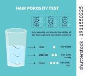 natural hair porosity float... | Shutterstock .eps vector #1911550225
