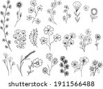 big set of hand drawn floral...   Shutterstock .eps vector #1911566488