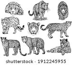 set of hand drawn sketch style... | Shutterstock .eps vector #1912245955