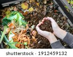 Hands Holding Compost Above The ...