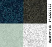 topography patterns. seamless...   Shutterstock .eps vector #1913231122